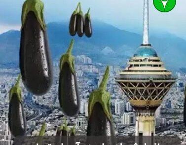 تحلیل بارش بادمجان از آسمان تهران